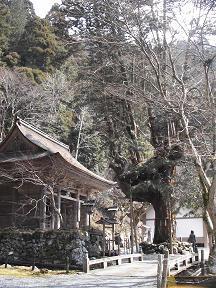 大悲山 峰定寺.JPG